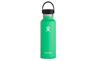 Hydro Flask - 18oz Standard Mouth Flex Cap Spearmint