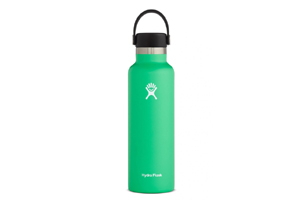 Hydro Flask - 21oz Standard Mouth Flex Cap Spearmint