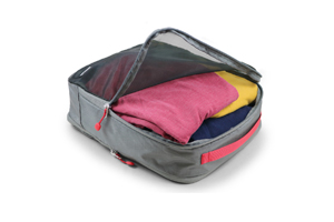Coghlan's - Packcube Organizer